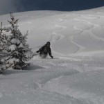 Австрия, фрирайд, ёлки / Austria, powder day, freeride