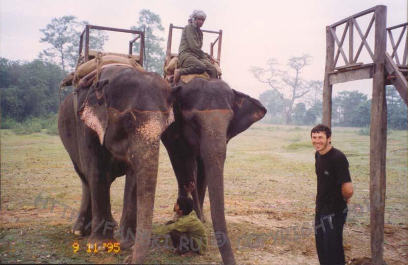 Слоны с корзинками