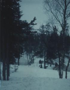 Редкая стоянка в лесной зоне