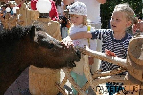 Новосибирский контактный зоопарк.