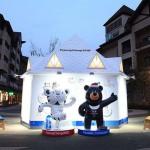 До Игр в Пхенчхане в 2018 году остается менее 180 дней