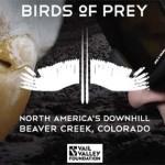 birdsofprey-4953251