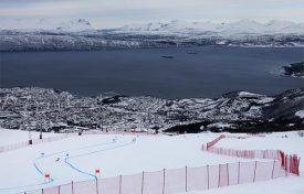 Narvik-84359234